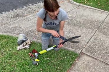 How to Sharpen Garden Hedge Trimmers