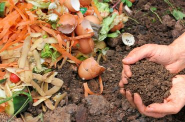How to Start & Use a Compost Bin