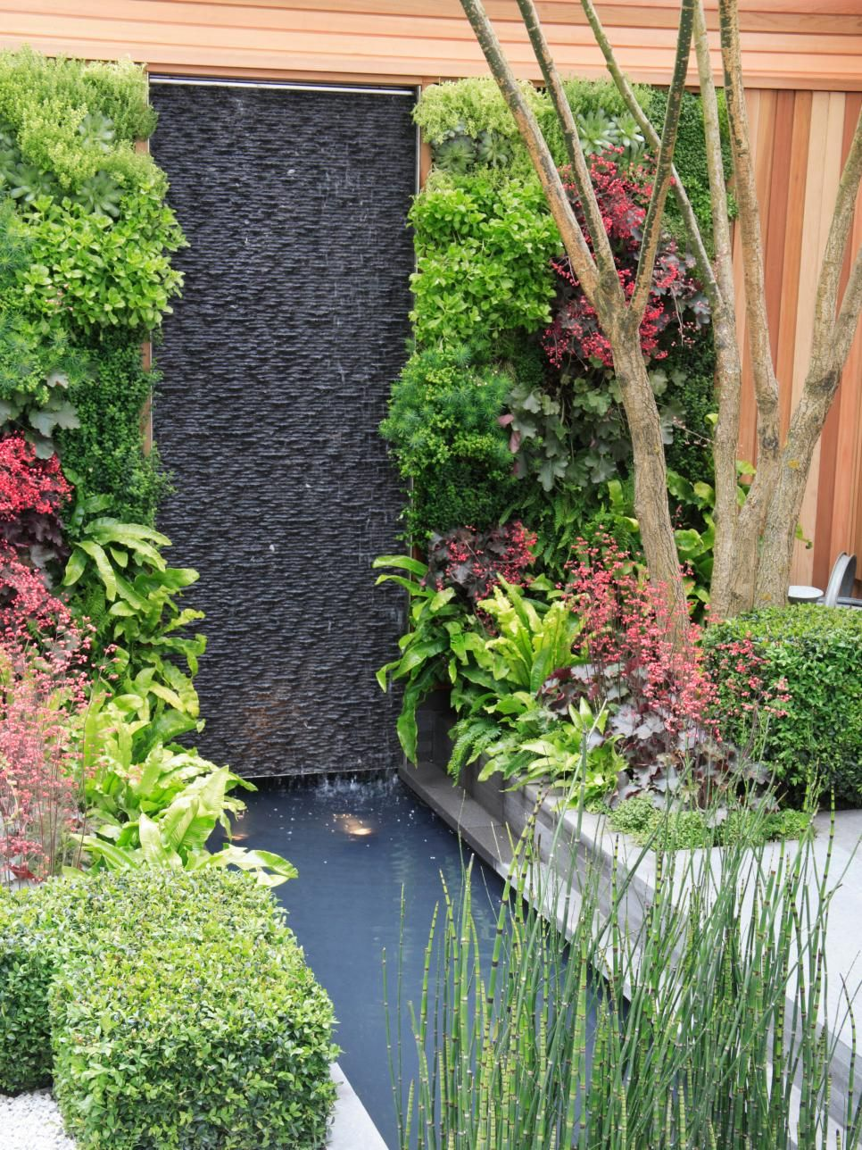 Living Wall and Water Feature