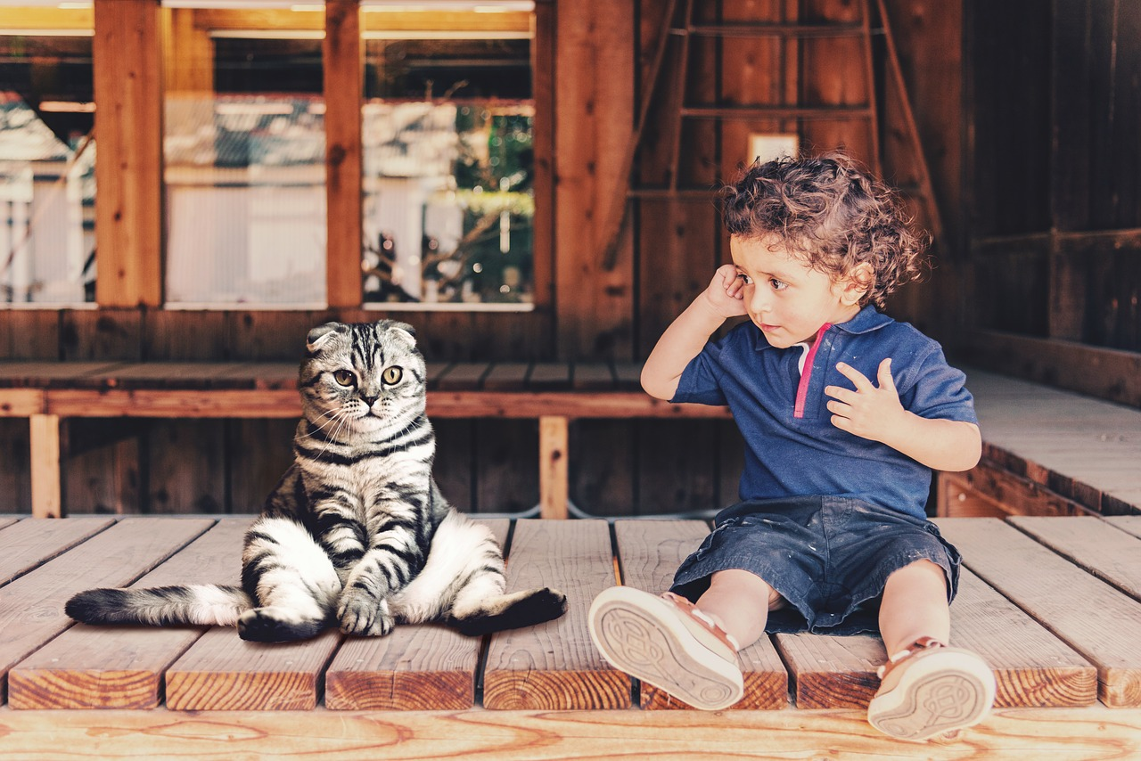 Four Reasons Why High Gloss Laminate Flooring Is Ideal for Families with Children and Pets